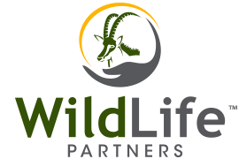 WildLife Partners, LLC
